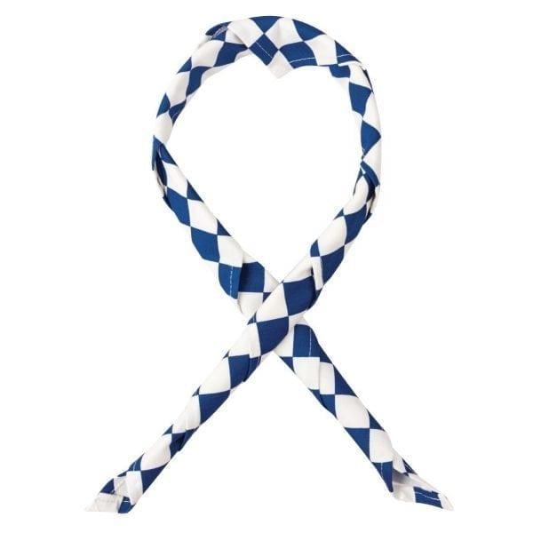 Coloured Neckerchief Big Blue/White Check-0